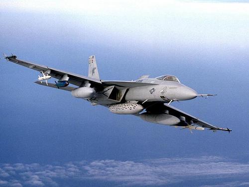 F 14 (戦闘機)の画像 p1_6